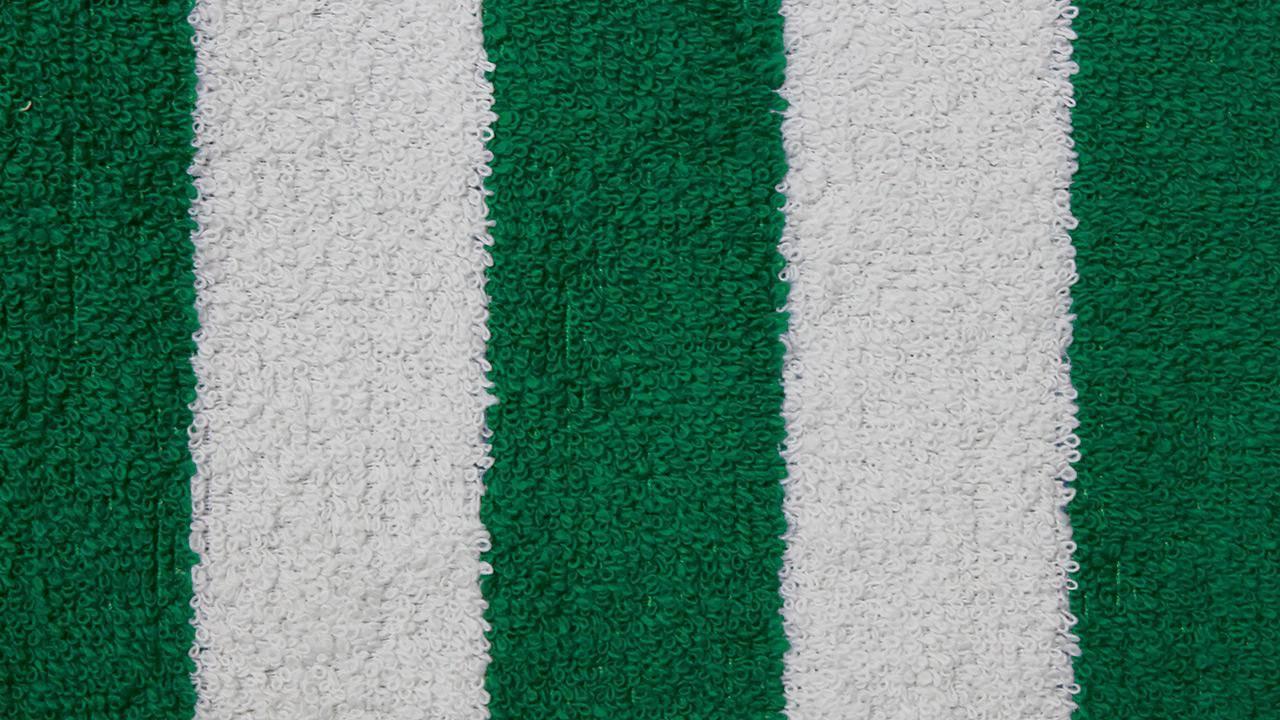 couleur-eponge-blanc-vert